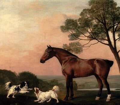 Dream-art Oil painting Stubbs George A Bay Hunter With Two Spaniels horse & dogs