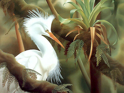 Elegance Oil painting nice white big mouth birds in Tropical jungle landscape