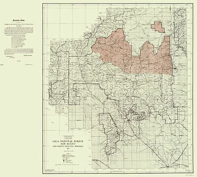 Topographical Map - Gila National Forest New Mexico - Elliot 1931 - 23 x 25.62