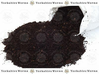 ORGANIC Worm Bedding for Wormery, Composters & Raised Beds - PREMIUM BEDDING 1 L