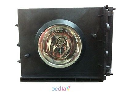 TV Lamp in Housing for SAMSUNG HLP5063WX/XAA OEM Equivalent Bulb with Housing