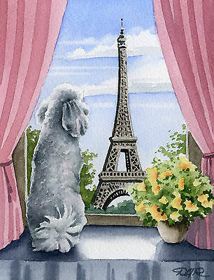 White POODLE IN PARIS Painting DOG 11 x 14 Signed Watercolor Art Print DJR
