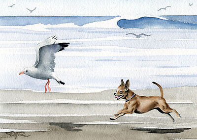 CHIHUAHUA AT THE BEACH Dog Watercolor 8 x 10 ART Print Signed by Artist DJR