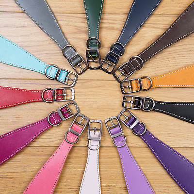 Italian Gh Whippet Lurcher Greyhound Soft Padded Leather Collars. Made In The Uk