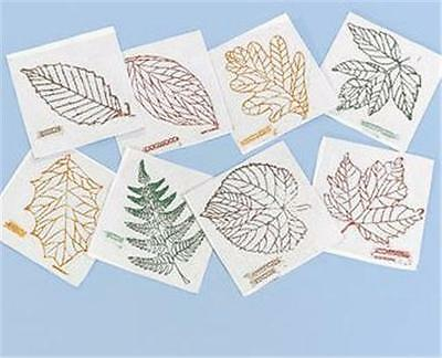 LEAVES Rubbing Plates Set 1 Teacher Science Montessori Art Crafts Drawing