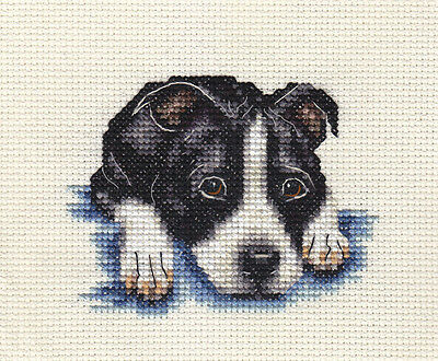 STAFFORDSHIRE BULL TERRIER dog, puppy, Staffy ~  Full counted cross stitch kit