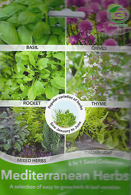 Grow Your Own Herbs,6  In One Mixed Variety Pack Garden Seed Parsley,basil,mint