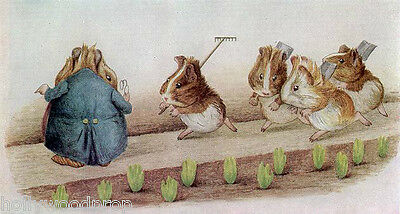 Beatrix Potter The Guinea Pigs Garden Gardening Art Artwork Poster Print Reprint