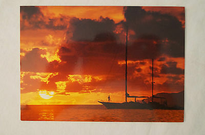Sunset on The Great Barrier Reef - Queensland - Collectable - Postcard.