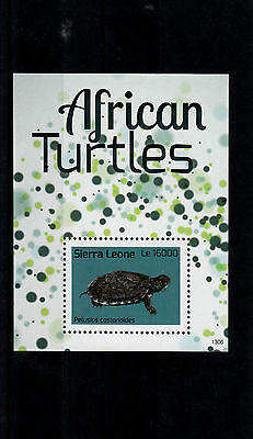 Sierra Leone 2013 MNH African Turtles 1v S/S Reptiles Pelusios castanoides
