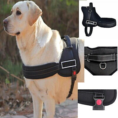 Dog Harness Control Strong Adjustable M  XL Training Walking Pet Car Padded