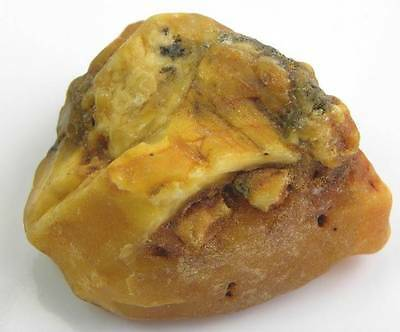 Natural Baltic AMBER Stone  ROUGH  (Not Polished) Specimen 51 gms
