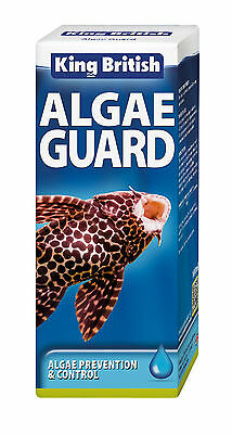 King British Green Algae Guard 100Ml Aquarium  Free Post