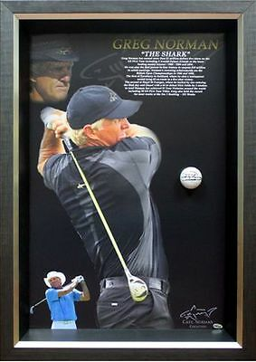 Greg Norman signed Golf Ball Framed with Certificate Of Authenticity