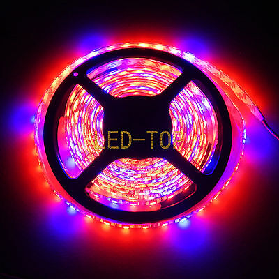 16.4FT 5M Plant Growing 5050 Strip Light Hydroponic RED BLUE 5:1 Waterproof 12V
