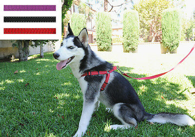Wholesale 12Pcs A Set Dog Adjustable Nylon Harnesses Easy To Use With Leash S