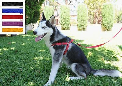 Wholesale 12 Pet Dog Cat Safe Control Walk Adjustable Harness With Leash Large