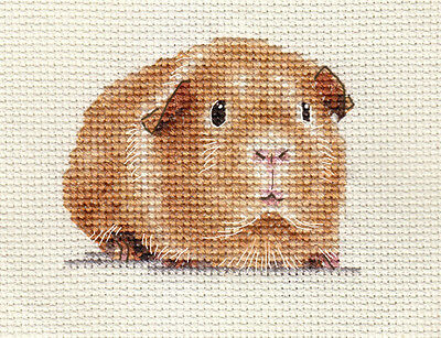 GUINEA PIG ~ Complete counted cross stitch kit * Exclusive Design