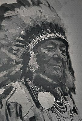 "Native American Indian, CANVAS ART, beautiful home decor, 30""x20"""