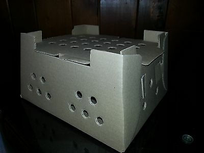 Cardboard Chick Shipping Box with Excelsior Pad. Holds 25 Day Old Chicks