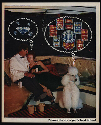 1963 Cute POODLE Dreaming Of KAL KA Dog Food - Diamonds - Limo -  VINTAGE AD