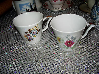 Winterling Rosiau Bavaria Cup's 2 Excellent Condition Flowers Spring Pattern