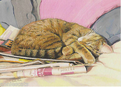 Ginger Cat Sleeping On Box Blank Greetings Card From Painting By Celia Pike 020