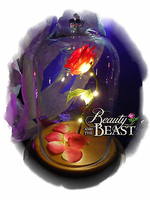 Enchanted Rose Beauty And The Beast Disney Forever Lighted  Flower Glass Dome