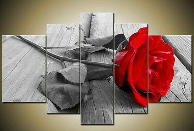 5 pieces Large canvas Modern Abstract Art Oil Painting Wall Art Deco (no framed)
