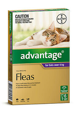 Advantage Flea Control for Cats Over 4kg - 6 Pack - Purple