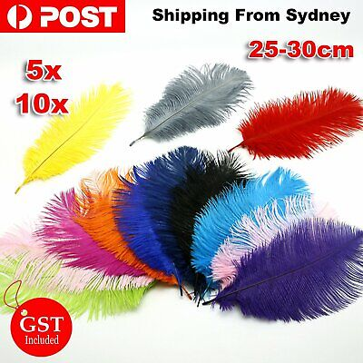 5/10X Ostrich Feather 25-30cm DIY Crafts Event Feathers Beautiful Wedding Party