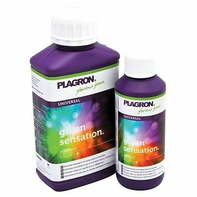 PLAGRON GREEN SENSATION 250ml decanted