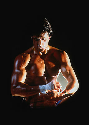 Rocky Stallone Giant Poster - A0 A1 A2 A3 A4 Sizes