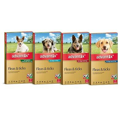 Advantix for Dogs 6 Pack - Fleas Ticks Biting Insects