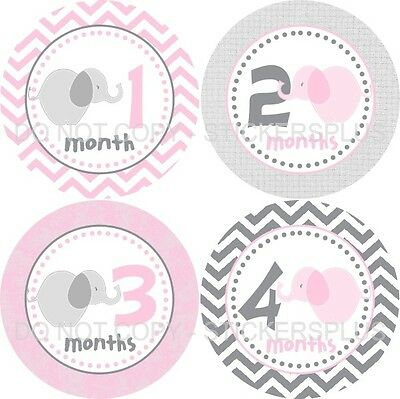 Baby Girl Monthly Growth Age Photo T Shirt Stickers Elephant Gray Pink Chevron