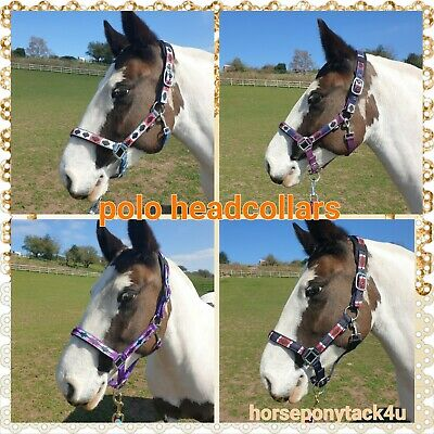 PONY//COB//FULL//XFULL SIZES POLO LEATHER HEAD COLLARS IN PINK