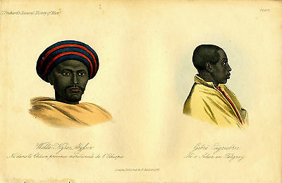 "1842 Genuine Antique Portrait ""..Ethiopia & ...Teugray"". Prichard Nat. Hist. Man"