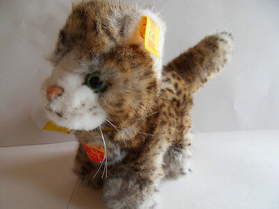 Steiff cat, w. all Ids, made in Germany 816