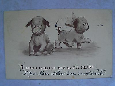 I DON'T BELIEVE SHE GOT A HEART! CUTE PUPPY POSTCARD MAILED: 1913, B & W PUPPIES