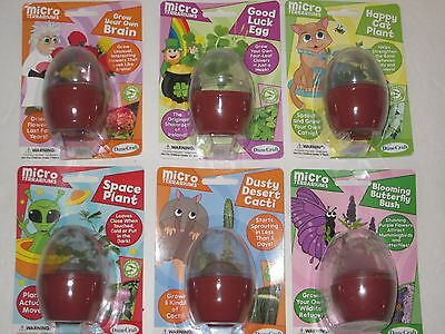 Micro Terrariums 6 Styles - Grow Plants Indoors, Kids House Plant Kit EGG Shaped