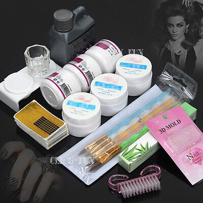 Nail Art Set Care Starter Kit Acrylic Powder Liquid UV GEL Brush Tips SET