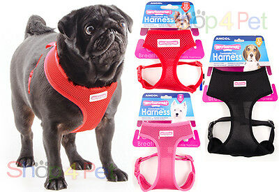 Dog Puppy Harness Ancol Comfort Mesh Breathable For Pet 4 Sizes & 4 Colours