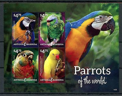 Antigua & Barbuda 2014 MNH Parrots of World 4v MS II Birds Macaws Amazons Stamps