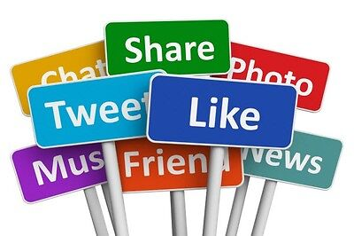 Social Networking Services for WordPress Site