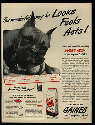 1945 Cute BOXER Dog Looks Feels Acts Wonderful - GAINES Dog Food VINTAGE AD