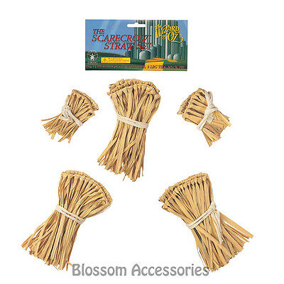 A349 Wizard Of Oz Scarecrow Straw Kit Book Week Costume Kit Accessory