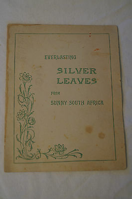 Everlasting Silver Leaves - South Africa- Unique Vintage -Collectable -Postcard