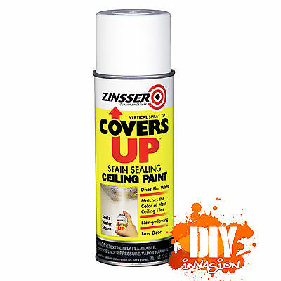 Zinsser Covers Up Stain Sealer Ceiling Paint Touch Up Spray Paint Can Matt White