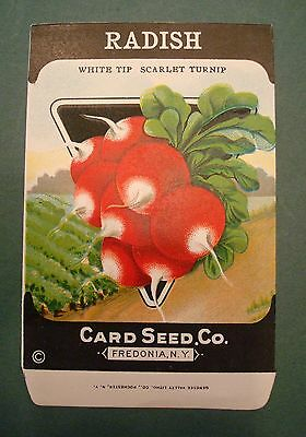 1920'S CARD CO. RADISH WHITE TIP SCALET TURNIP LITHO SEED PACKET FREDONIA NY