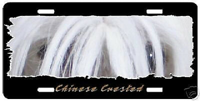 "Chinese Crested  "" The Eyes Have It ""  License  Plate"